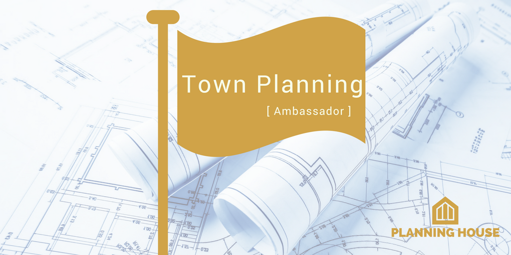 RTPI Town Planning Ambassador – Our visit to Kingsmeadow Community School